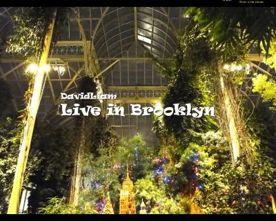 techno dj set, live in brooklyn.